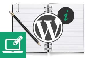 liesbeth-website-tips-wordpress-handleiding